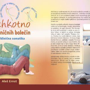 Knjiga Lahkotno iz kroničnih bolečin, AEQ klinična somatika