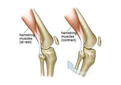 Bolečine v stopalih in kolkih