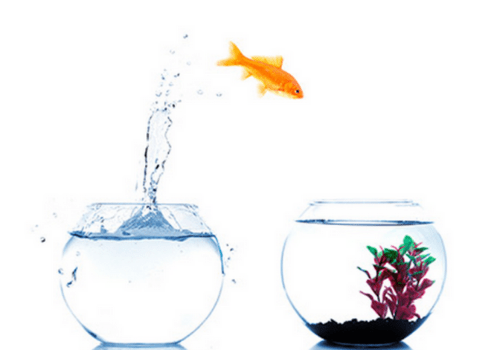 Kako se AEQ metoda® razlikuje od drugih pristopov